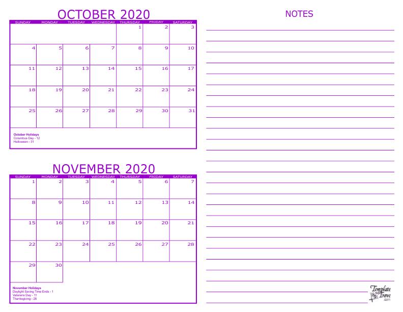 Nov 2 2020 ipo
